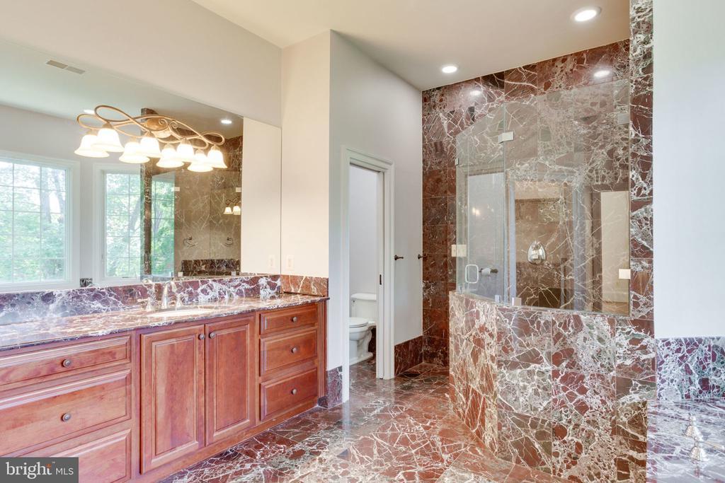 ML Master Bath w/ burgundy marble - 1843 HUNTER MILL RD, VIENNA
