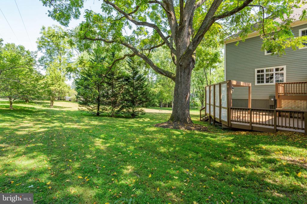 Deck off kitchen is a perfect place enjoy the view - 1843 HUNTER MILL RD, VIENNA