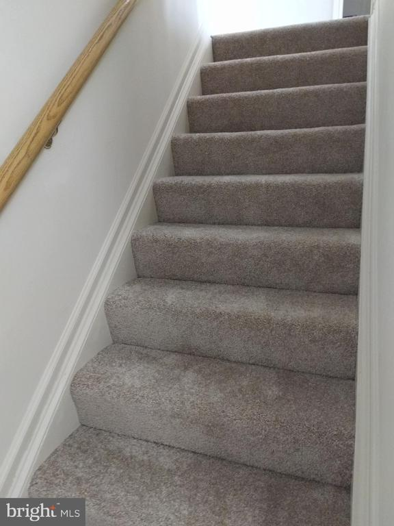 Stairs to upper level and new carpt - 3827 EL CAMINO PL #13, ALEXANDRIA