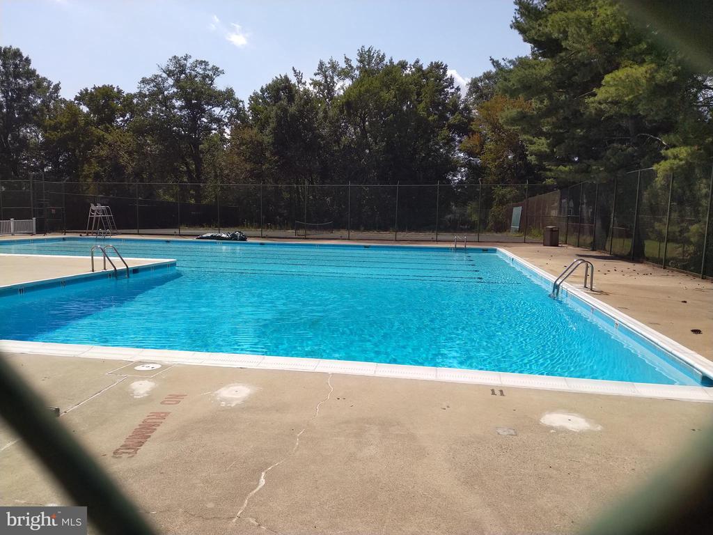 Cmmunity pool - 3827 EL CAMINO PL #13, ALEXANDRIA