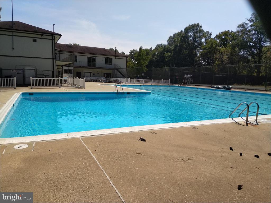 Community pool - 3827 EL CAMINO PL #13, ALEXANDRIA