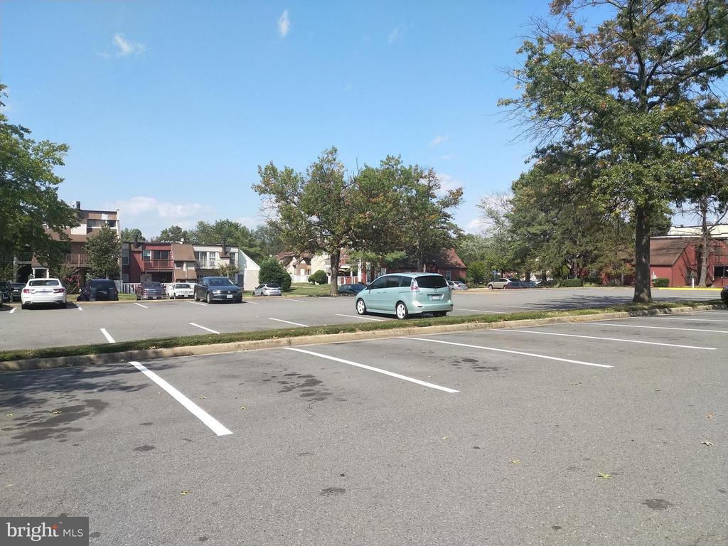 Always lots of parking in lot. - 3827 EL CAMINO PL #13, ALEXANDRIA