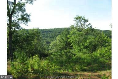Land for Sale at Basye, Virginia 22810 United States