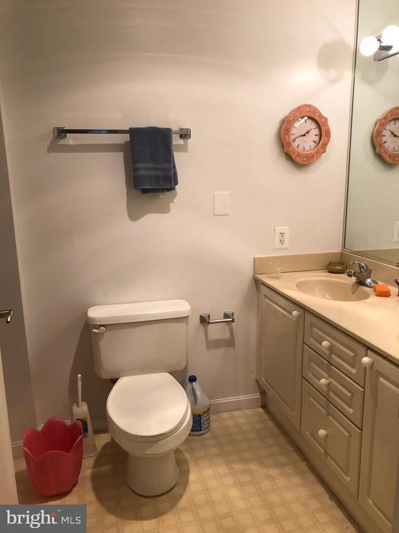 Bathroom 1 Main Soaking Tub - 19375 CYPRESS RIDGE TER #704, LEESBURG