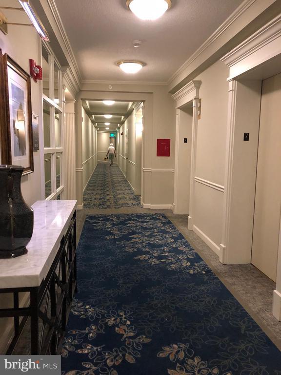 Elevator on 7th Floor - 19375 CYPRESS RIDGE TER #704, LEESBURG