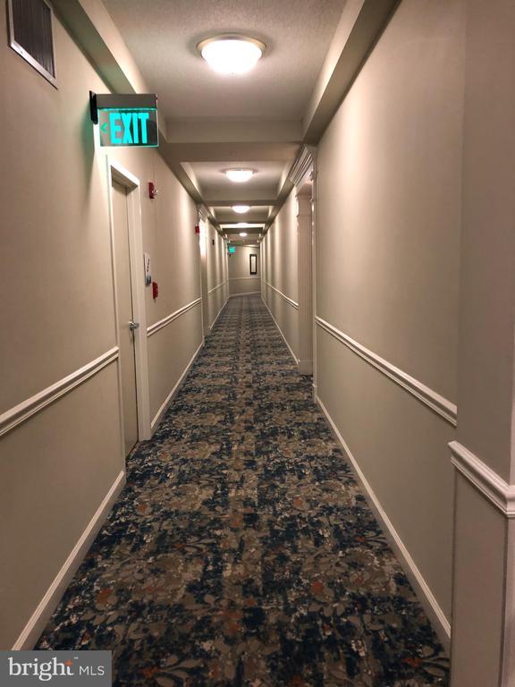 7th Floor Hallway - 19375 CYPRESS RIDGE TER #704, LEESBURG