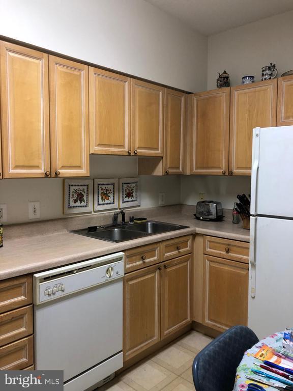 Kitchen: Dishwasher, Refrigerator - 19375 CYPRESS RIDGE TER #704, LEESBURG