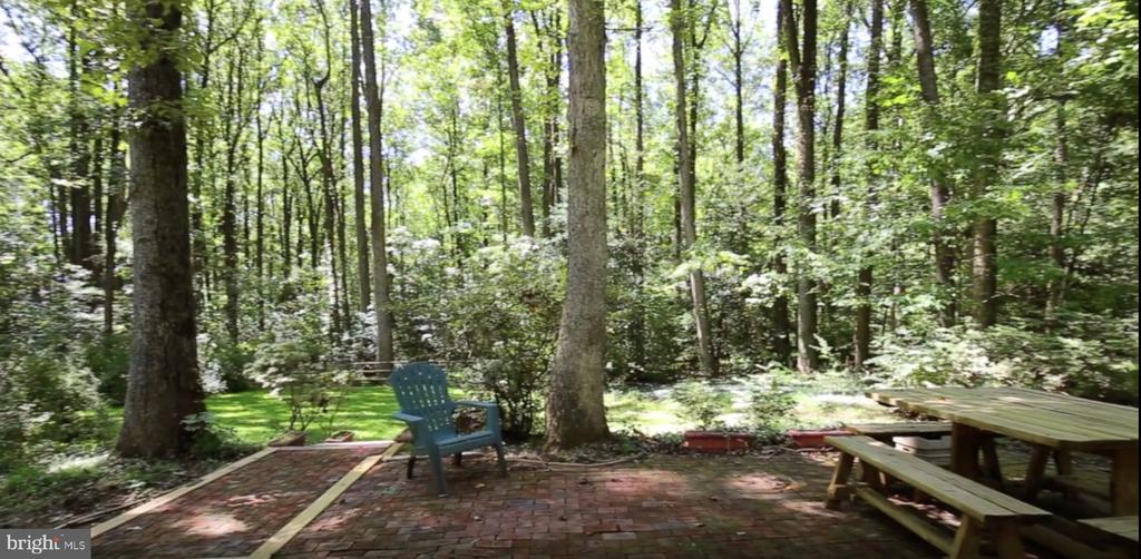 0.63 Acre lot backing to parkland! - 11715 BLUE SMOKE TRL, RESTON