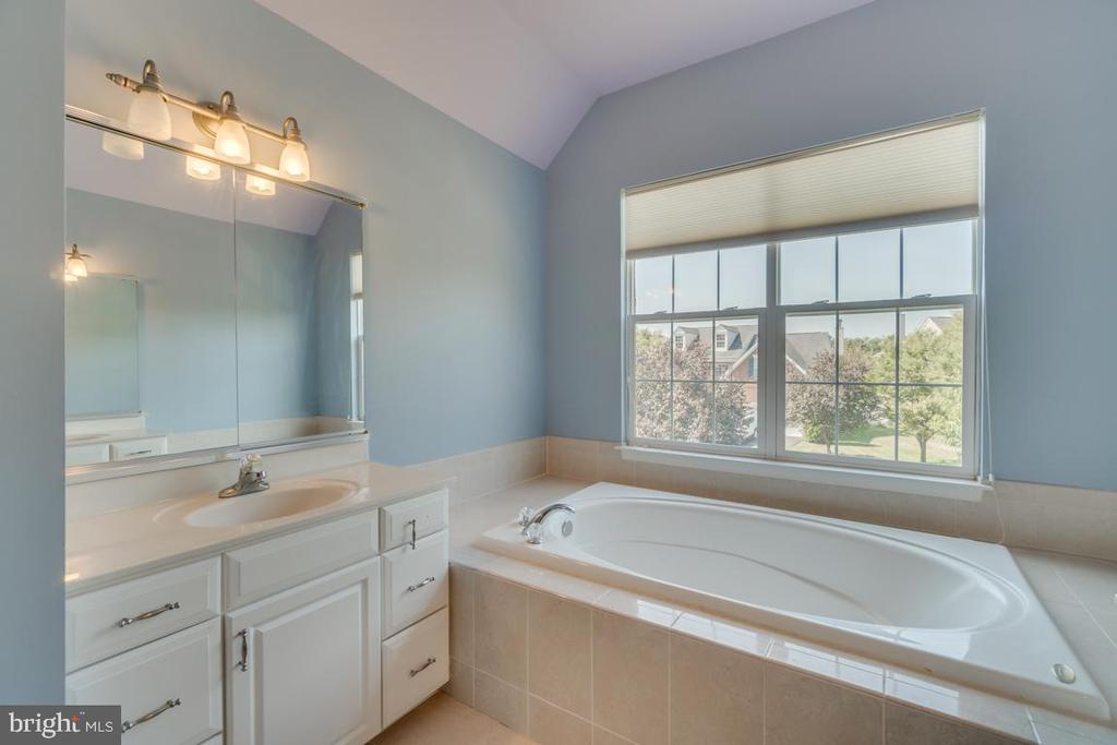 Master Bathroom with two vanities & tub - 20210 HIDDEN CREEK CT, ASHBURN