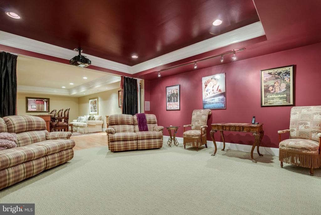 Plenty of space to view any movie you choose! - 1011 N WASHINGTON ST, ALEXANDRIA