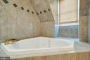 Soaking tub! - 1011 N WASHINGTON ST, ALEXANDRIA