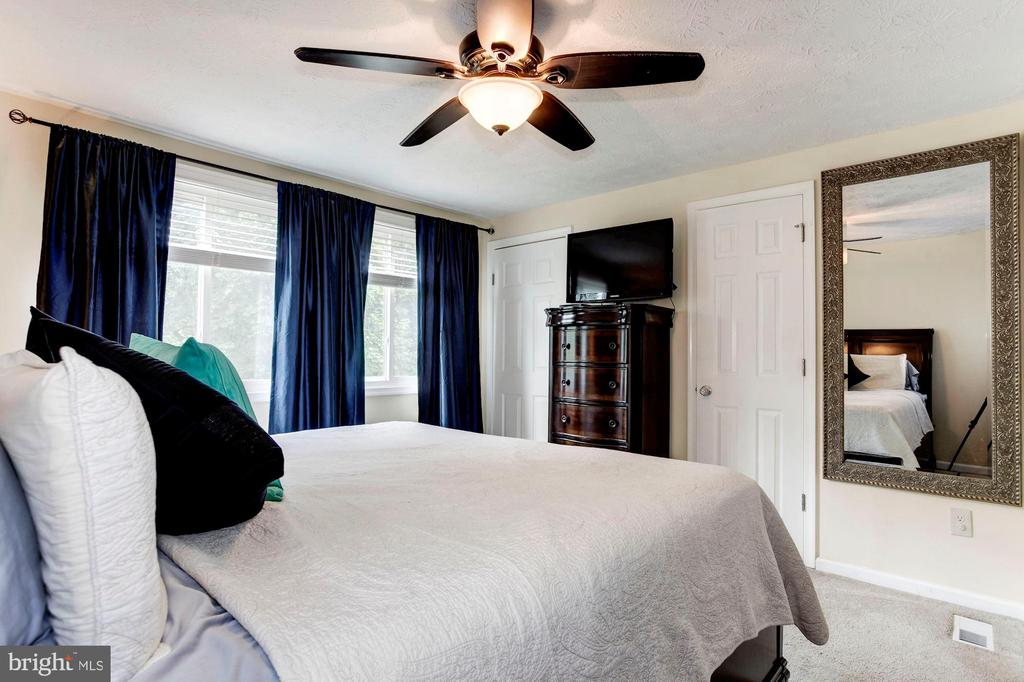 Master Bedroom - Wall of Windows + Ceiling Fan! - 6115 GARDENIA CT, ALEXANDRIA