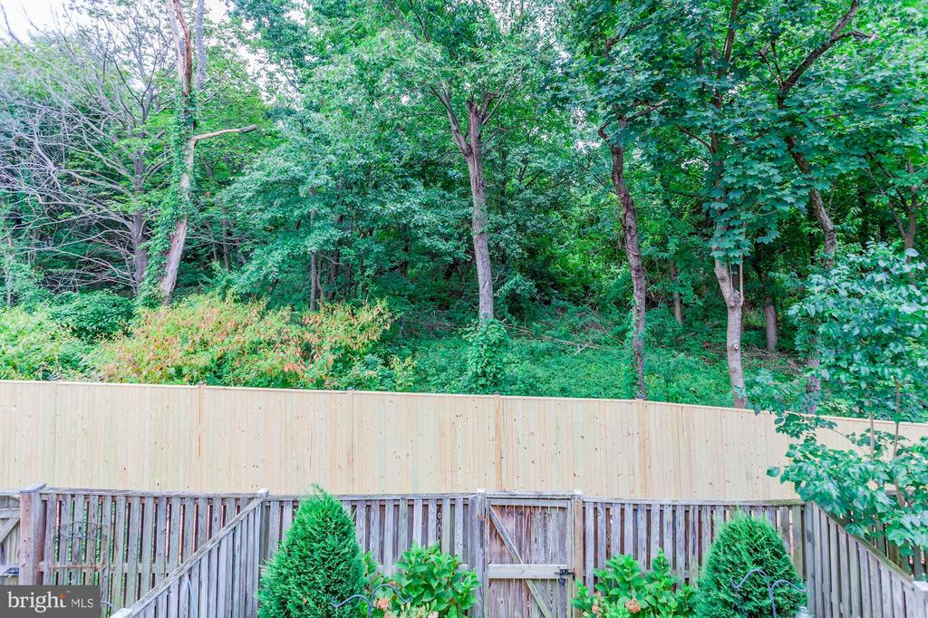 Spectacular Tree Lined & Wooded Views from Deck! - 6115 GARDENIA CT, ALEXANDRIA