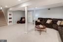 Lower level rec room and storage. - 11005 BIRDFOOT CT, RESTON