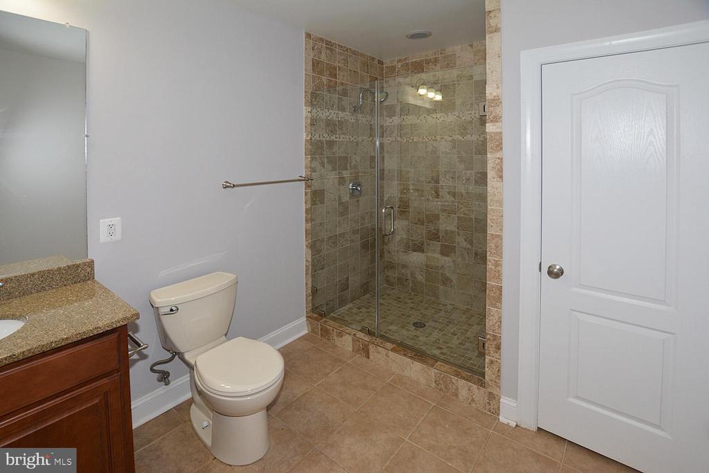 Lower Level Full Bath - 1706 N RANDOLPH ST, ARLINGTON