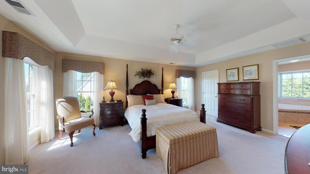 Tray Ceiling - 20386 CLIFTONS POINT ST, POTOMAC FALLS