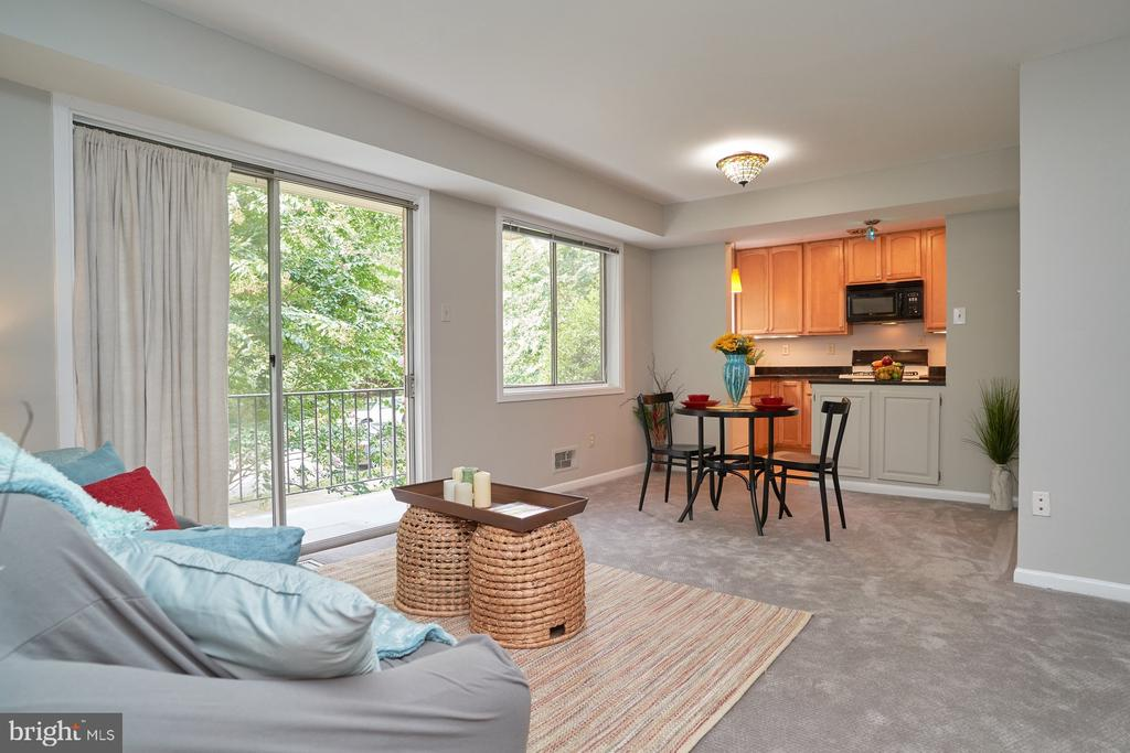 View from Living Area - 10607 KENILWORTH AVE #K-104, BETHESDA