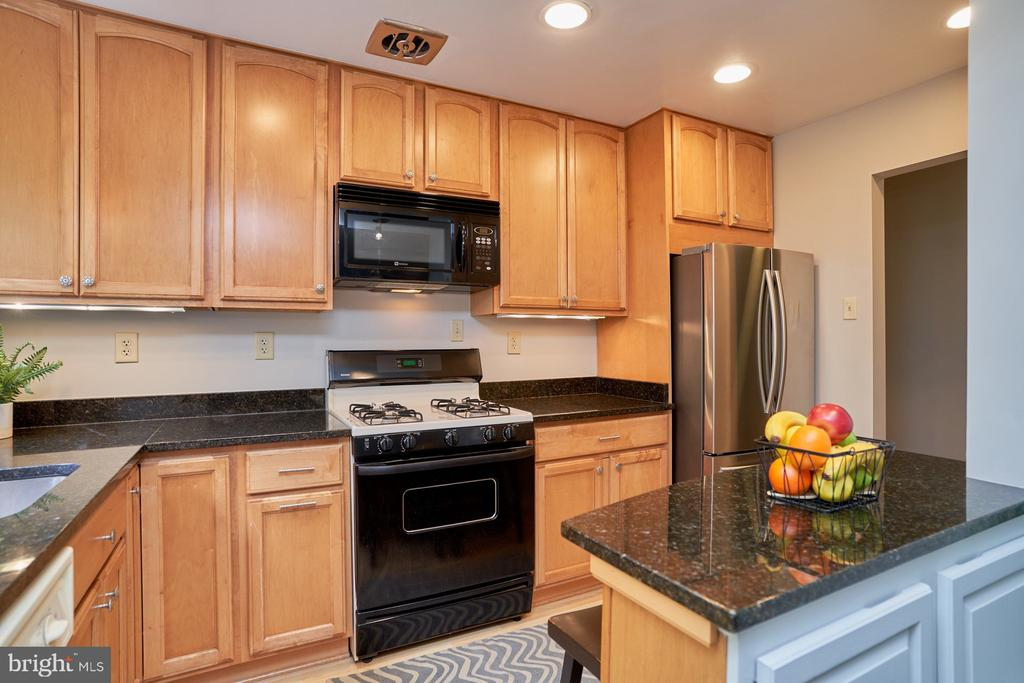 Updated Kitchen - 10607 KENILWORTH AVE #K-104, BETHESDA