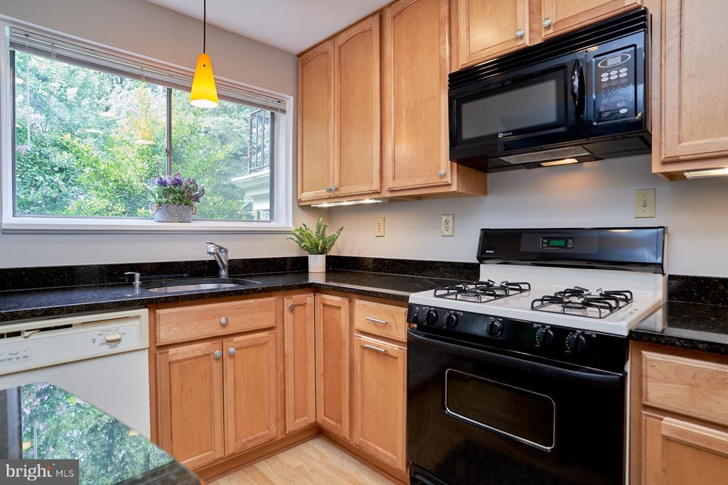 Updated Kitchen w/Granite Countertops - 10607 KENILWORTH AVE #K-104, BETHESDA