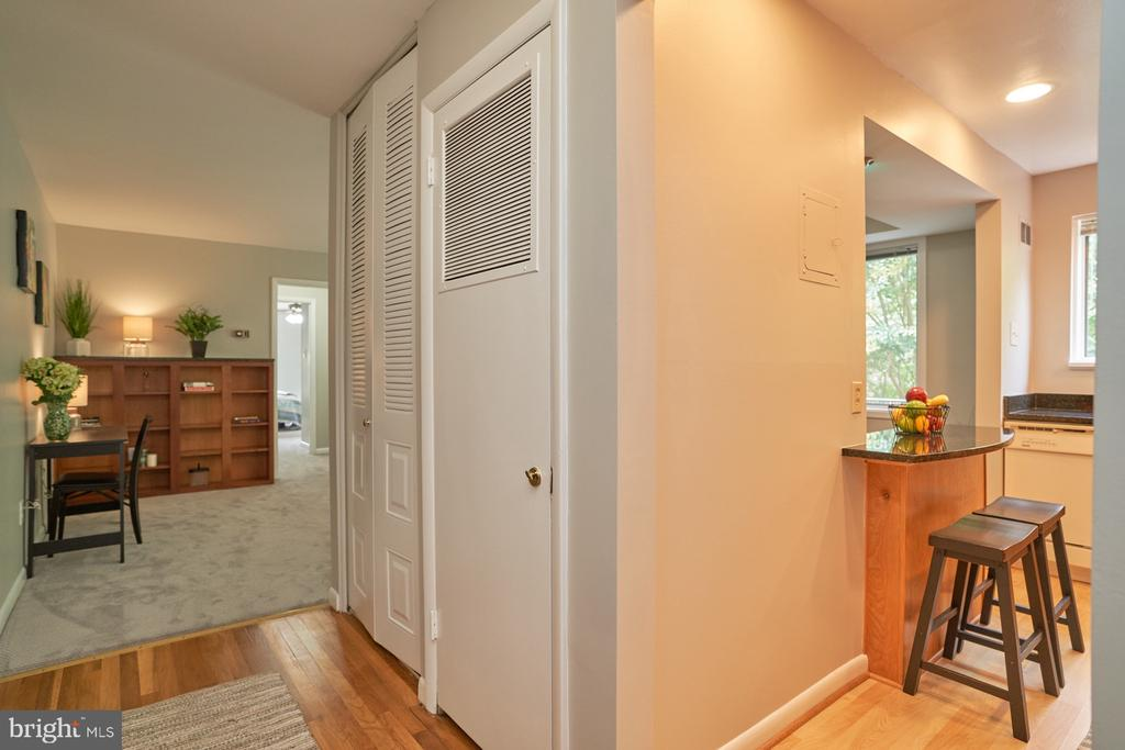View from Main Entrance Hallway - 10607 KENILWORTH AVE #K-104, BETHESDA