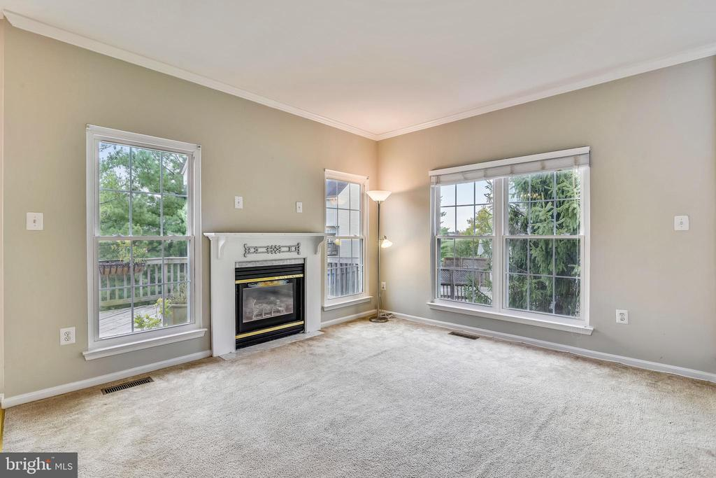 Family room, views to treed yard! - 44127 ALLDERWOOD TER, ASHBURN