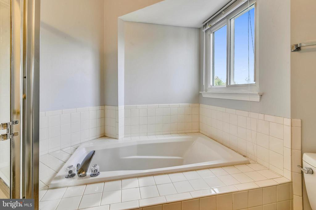 Light-filled master bath w/luxurious soaking tub. - 44127 ALLDERWOOD TER, ASHBURN