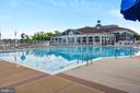 Community pool - 44127 ALLDERWOOD TER, ASHBURN