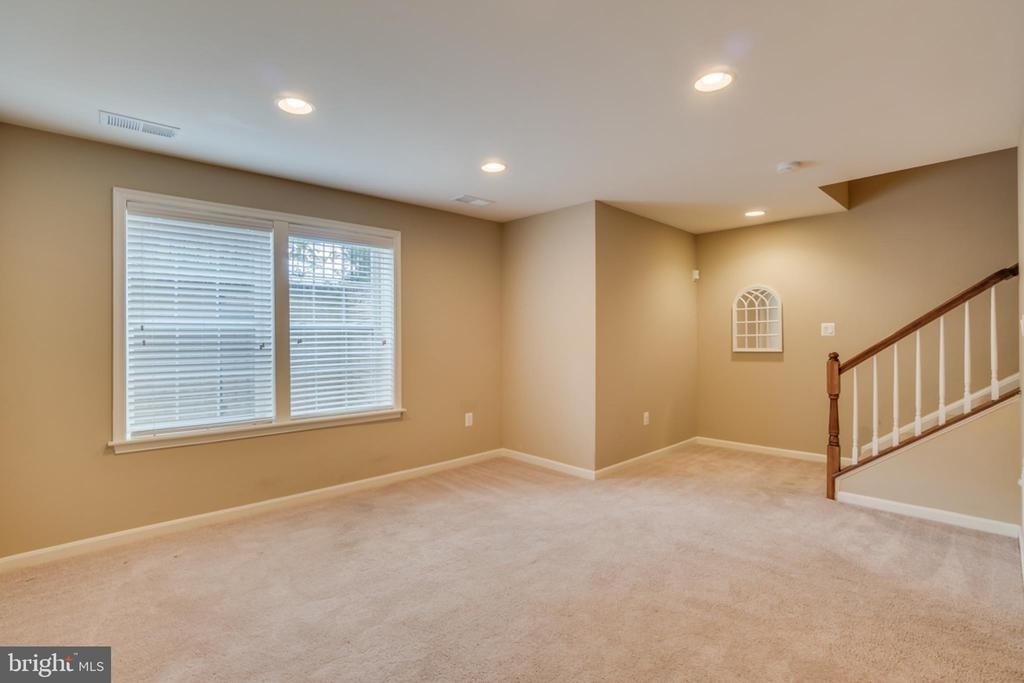 Carpeted Basement - 203 APRICOT ST, STAFFORD