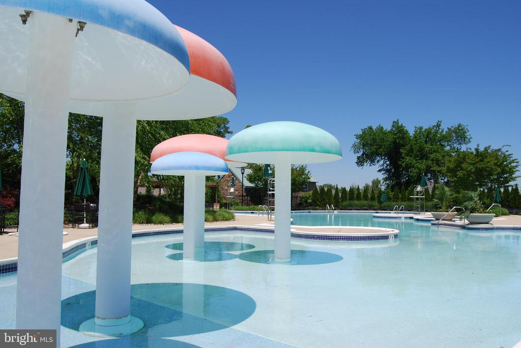 Outdoor Pools - 18837 ACCOKEEK TER, LEESBURG