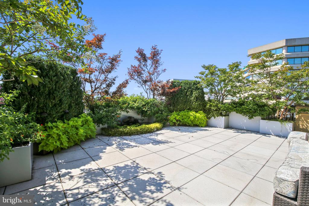 Terrace plantings - 4301 MILITARY RD NW #PH2, WASHINGTON