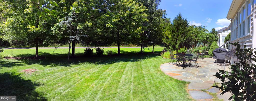 Private backyard with mature trees - 25327 JUSTICE DR, CHANTILLY
