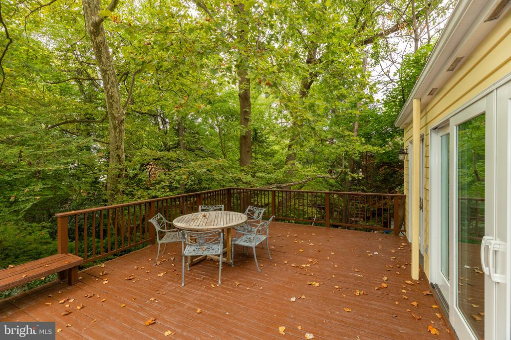 Private back garden with leafy views - 3601 TILDEN ST NW, WASHINGTON