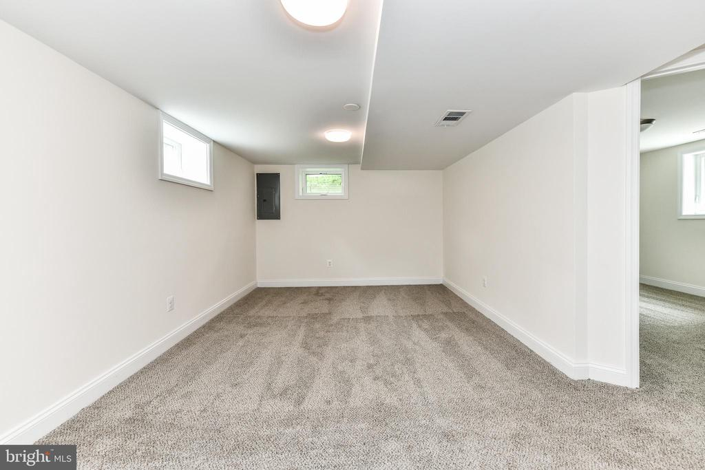 Large basement area is fully finished! - 5201 MOUNT VERNON MEMORIAL HWY, ALEXANDRIA