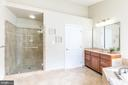 light bright and updated master bath - 25327 JUSTICE DR, CHANTILLY