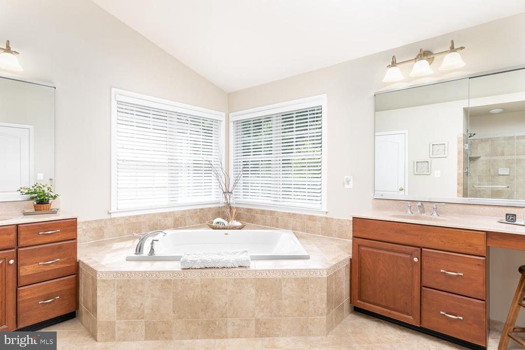 crisp and clean master bath - 25327 JUSTICE DR, CHANTILLY