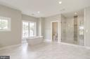 Glamorous master bathroom with soaking tub/shower. - 2054 ARCH DR, FALLS CHURCH