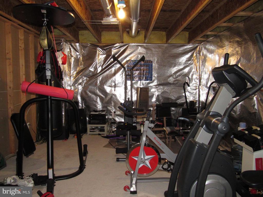 Exercise Area - 2763 MYRTLEWOOD DR, DUMFRIES