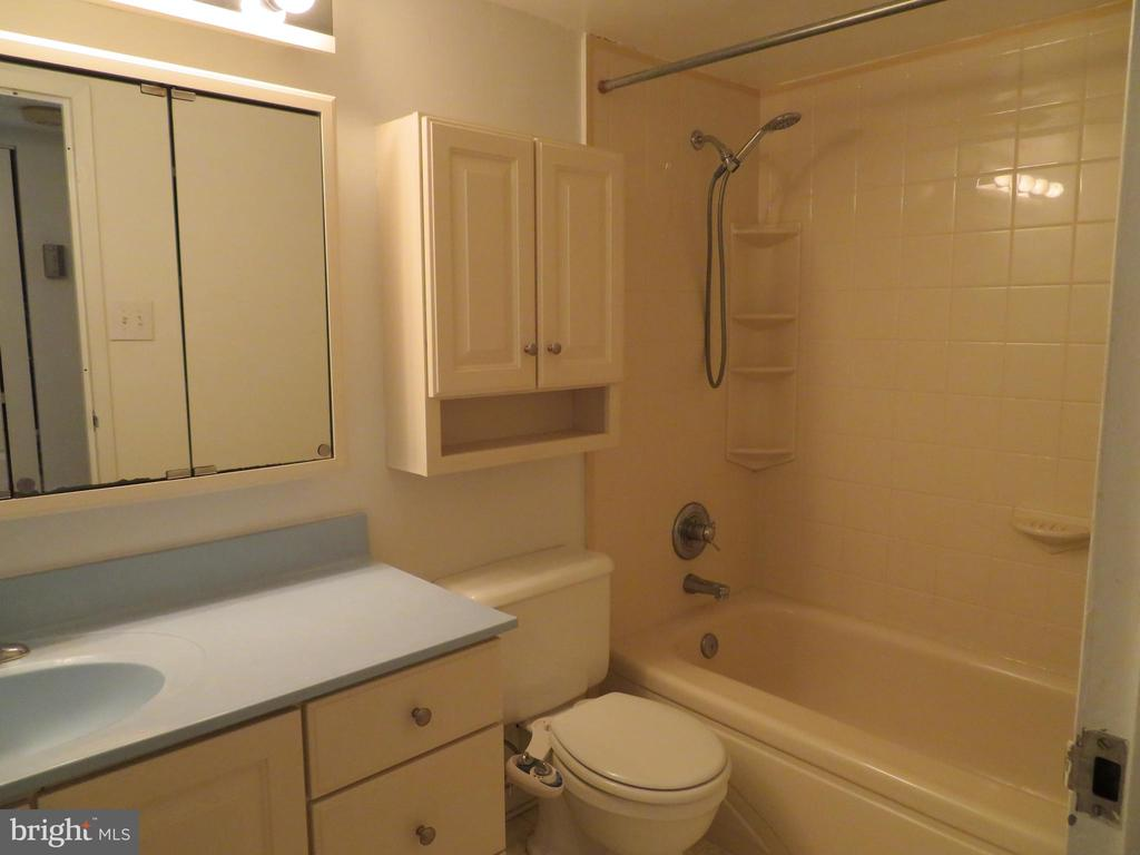 Bath - 11220 CHESTNUT GROVE SQ #124, RESTON