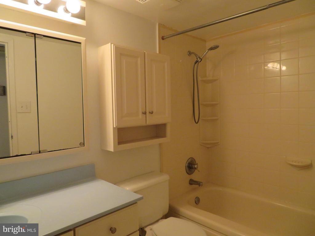 Bathroom - 11220 CHESTNUT GROVE SQ #124, RESTON