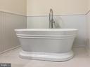 Freestanding tub with custom trim! - 170 LITTLE WHIM, FREDERICKSBURG