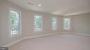 master bed with abundant lighting - 5636 6TH ST N, ARLINGTON