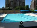 Lap Lanes for the Serious Swimmers + Kiddie Pool - 3800 FAIRFAX DR #704, ARLINGTON