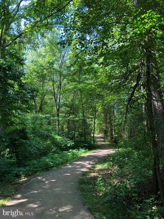 Walking Trails - 9806 RAMSAY DR, FREDERICKSBURG