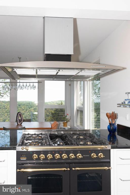 New state of the art stove - 74 WOODCUTTERS LN, HARPERS FERRY