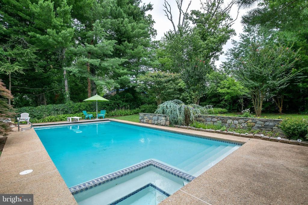 Pool with Spa - 2815 N LEXINGTON ST, ARLINGTON