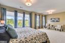 Master bedroom suite with view of park - 425 KORNBLAU TER SE, LEESBURG
