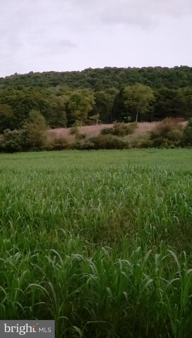 Arazi için Satış at Clearville, Pennsylvania 15535 Amerika Birleşik Devletleri