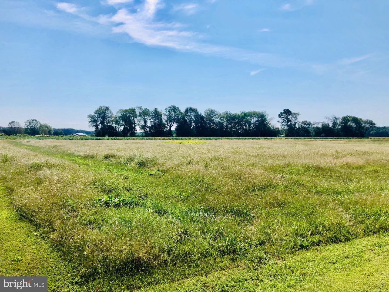 Terrain pour l Vente à Harrington, Delaware 19952 États-Unis
