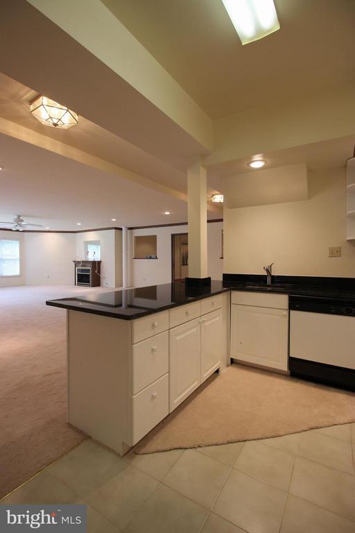 Downstairs Kitchen - 1056 BELLVIEW PL, MCLEAN