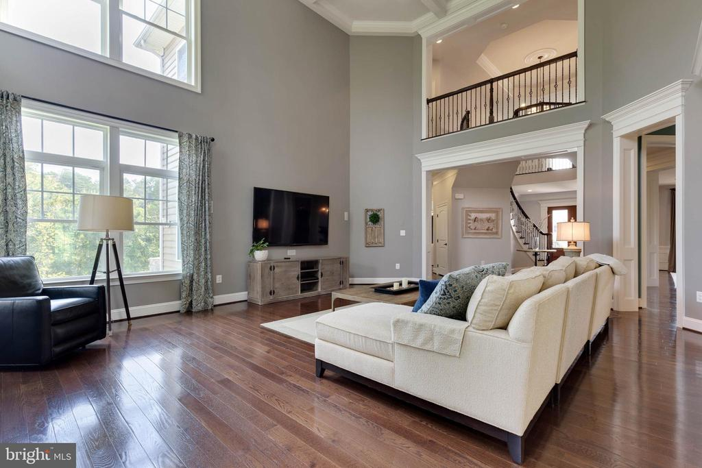 Family Room - 26479 BARTON PARK CT, CHANTILLY